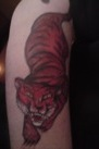 Thumbnail that leads to photos of Tiger body art